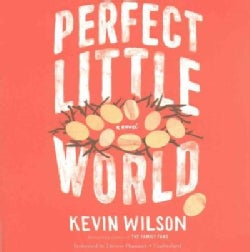 Perfect Little World (CD-Audio)
