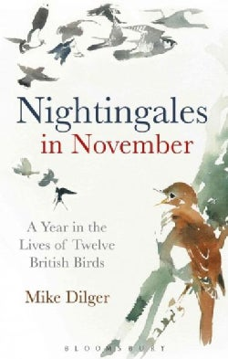 Nightingales in November: A Year in the Lives of Twelve British Birds (Hardcover)