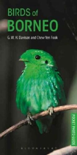 Birds of Borneo (Paperback)