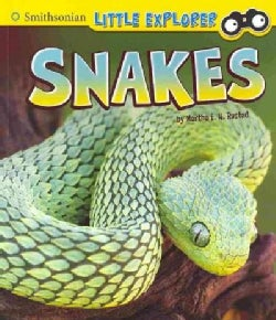 Snakes (Paperback)
