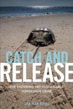 Catch and Release: The Enduring Yet Vulnerable Horseshoe Crab (Hardcover)