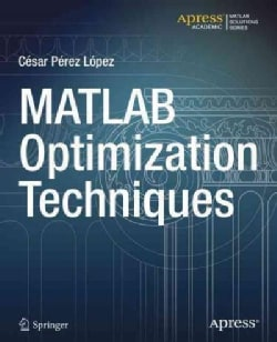 Matlab Optimization Techniques (Paperback)