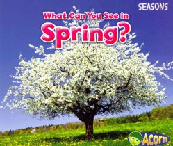What Can You See in Spring? (Paperback)
