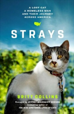 Strays: A Lost Cat, a Homeless Man, and Their Journey Across America (Hardcover)