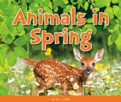 Animals in Spring (Hardcover)
