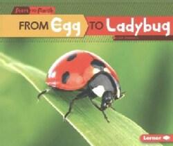 From Egg to Ladybug (Paperback)