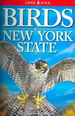 Birds of New York State (Paperback)