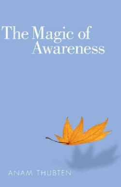 The Magic of Awareness (Paperback)