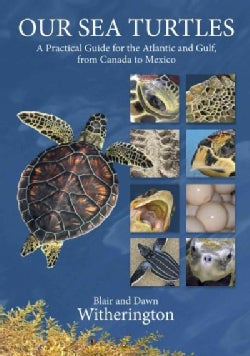 Our Sea Turtles: A Practical Guide for the Atlantic and Gulf, from Canada to Mexico (Paperback)