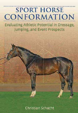 Sport Horse Conformation: Evaluating Athletic Potential in Dressage, Jumping and Eventing Prospects (Hardcover)