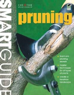 Smart Guide Pruning (Paperback)