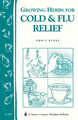 Growing Herbs for Cold and Flu Relief (Paperback)