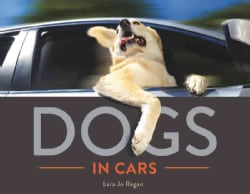Dogs in Cars (Hardcover)