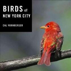 Birds of New York City (Hardcover)