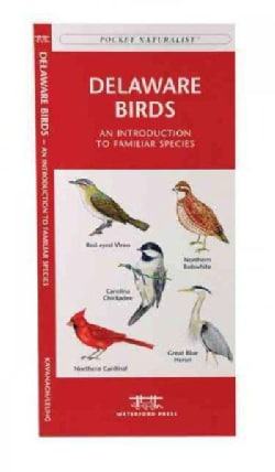 Delaware Birds: An Introduction to Familiar Species (Paperback)