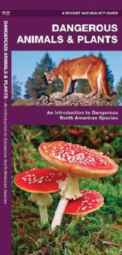 Dangerous Animals And Plants: An Introduction to Dangerous North American Species (Paperback)