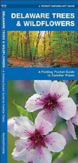Delaware Trees & Wildflowers: An Introduction to Familiar Species (Paperback)