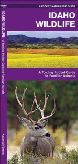 Idaho Wildlife: An Introduction to Familiar Species (Cards)