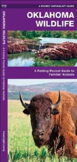 Oklahoma Wildlife: An Introduction to Familiar Species (Wallchart)