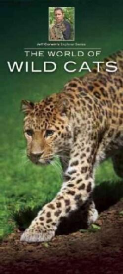The World of Wild Cats (Wallchart)