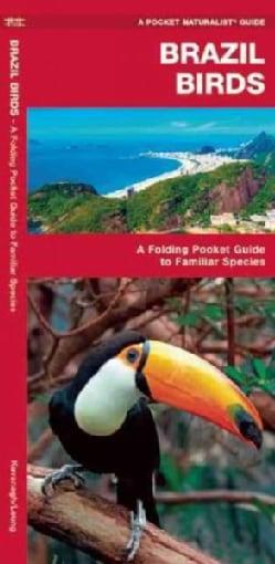 Brazil Birds: A Folding Pocket Guide to Familiar Species (Wallchart)