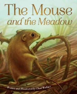 The Mouse and the Meadow (Paperback)