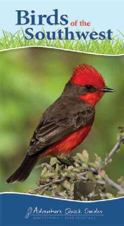 Birds of the Southwest (Paperback)