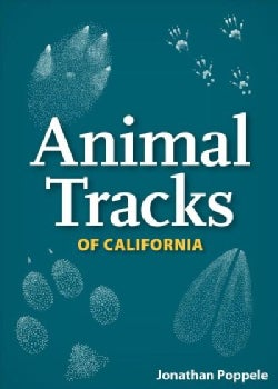 Animal Tracks of California Playing Cards (Cards)