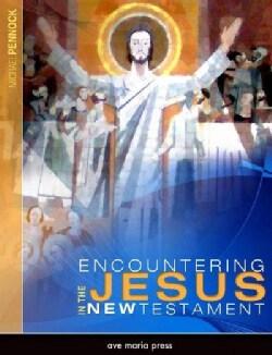 Encountering Jesus in the New Testament (Paperback)