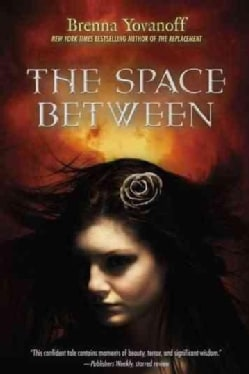The Space Between (Paperback)