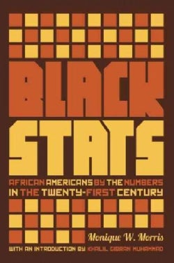 Black Stats: African Americans by the Numbers in the Twenty-First Century (Paperback)