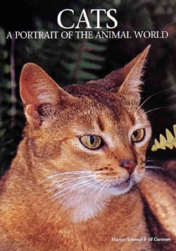 Cats: A Portrait of the Animal World (Hardcover)