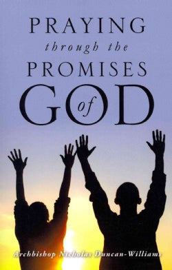 Praying Through the Promises of God (Paperback)