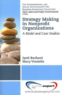 Strategy Making in Nonprofit Organizations: A Model and Case Studies (Paperback)