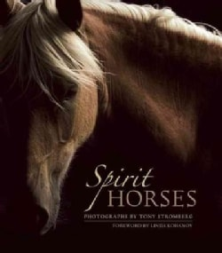 Spirit Horses (Paperback)