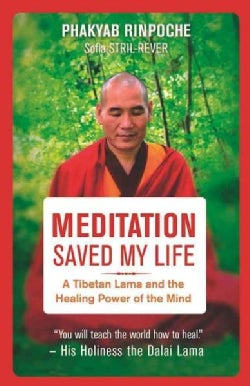 Meditation Saved My Life: A Tibetan Lama and the Healing Power of the Mind (Paperback)