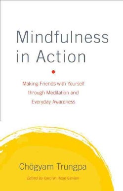 Mindfulness in Action: Making Friends With Yourself Through Meditation and Everyday Awareness (Hardcover)