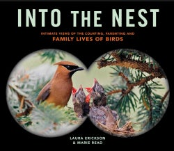 Into the Nest: Intimate Views of the Courting, Parenting, and Family Lives of Familiar Birds (Paperback)