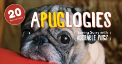 Apuglogies: Saying Sorry With Adorable Pugs (Paperback)