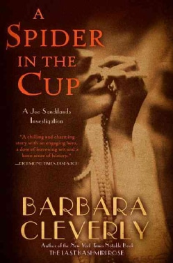 A Spider in the Cup (Paperback)
