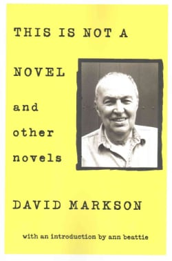 This Is Not a Novel and other novels (Paperback)