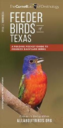Feeder Birds of Texas: A Folding Pocket Guide to Common Backyard Birds (Wallchart)