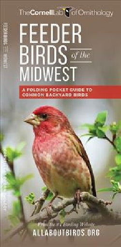 Feeder Birds of the Midwest: A Folding Pocket Guide to Common Backyard Birds (Wallchart)