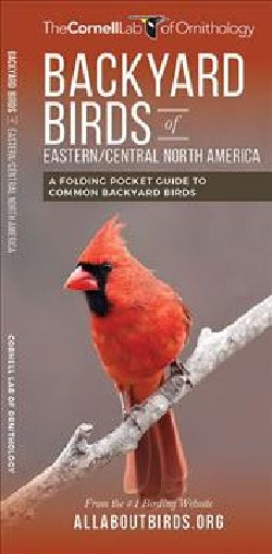 Backyard Birds of Eastern/Central North America: A Folding Pocket Guide to Common Backyard Birds (Wallchart)