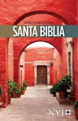Santa Biblia / Holy Bible: Nueva Version Internacional / New International Version (Paperback)