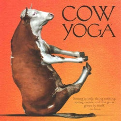 Cow Yoga (Hardcover)