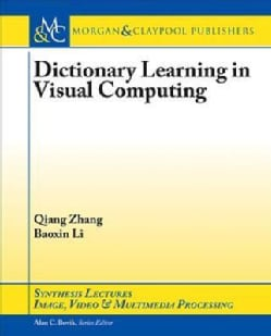Dictionary Learning in Visual Computing (Paperback)