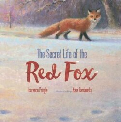 The Secret Life of the Red Fox (Hardcover)