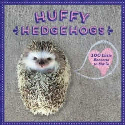 Hedgehog Wisdom: Little Reasons to Smile (Hardcover)
