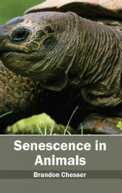 Senescence in Animals (Hardcover)